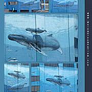 Whaling Wall 42 -  East Coast Humpbacks - Original Painting By Wyland Art Print