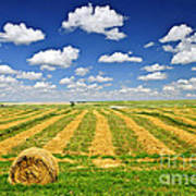 Wheat Farm Field And Hay Bales At Harvest In Saskatchewan Art Print