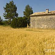 Wheat Field, France Art Print