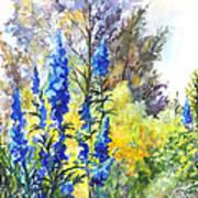 Where The Delphinium Blooms Art Print