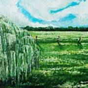Where The Green Grass Grows Art Print