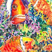 Where's Nemo I Art Print by Ann  Nicholson
