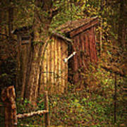 Which Way To The Outhouse? Art Print by Priscilla Burgers