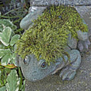 Whimsical Frog Art Print