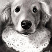 Whimsical Labrador Retriever In A Costume Art Print