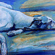 Whippet-effects Of Gravity-6 Art Print