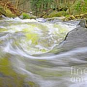 Whirlpool In Forest Art Print