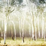 Whisper The Trees Art Print