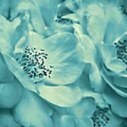 Whispers Of Teal Roses Art Print