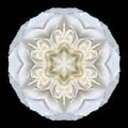 White Begonia II Flower Mandala Art Print by David J Bookbinder