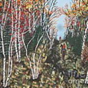 White Birch Trail Ride Art Print