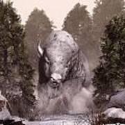 White Buffalo Print by Daniel Eskridge
