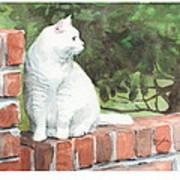 White Cat On Brick Wall Watercolor Portrait Art Print