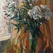 White Chrysanthemums Art Print