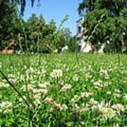 White Clover Field And The Playground Art Print