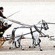 White Coach Horses Art Print