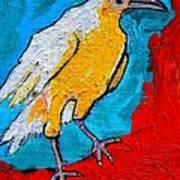 White Crow Art Print