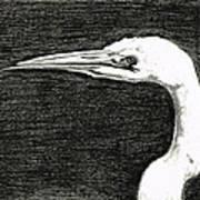 White Egret Art - The Great One - By Sharon Cummings Art Print