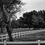 White Fence On The Wooded Green Art Print