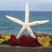 White Finger Starfish And Flowers Art Print