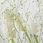 White Flowers Pi Art Print