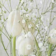 White Flowers Pii Art Print