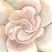 White Gardenia 1 Art Print by Anna Skaradzinska