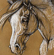 White Horse Soft Pastel Sketch Art Print