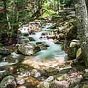 White Mountains Stream Art Print