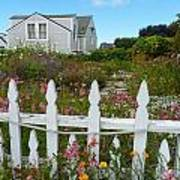 White Picket Fence In Mendocino Art Print