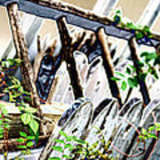 White Picket Fence Art Print