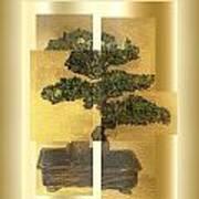 White Pine Bonsai Art Print