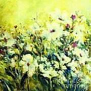White Poppy Garden Art Print