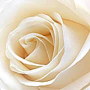 White Rose Heart Art Print