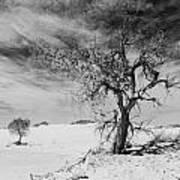 White Sands National Monument 1 Light Mono Art Print