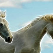 White Stallions Art Print