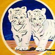 White Tiger Twins Art Print