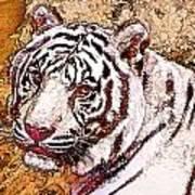 White Tiger Twist Art Print
