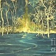 White Trees In The Blue Woods Art Print by Stefan Duncan