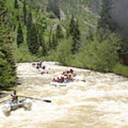 Animas River White Water Rafting The  Art Print
