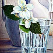 White White Jasmine  Art Print