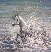 White Wild Horse Art Print
