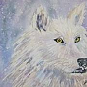 White Wolf Of The North Winds Art Print