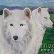 White Wolves Art Print