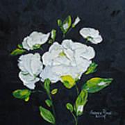 White Wonder Art Print