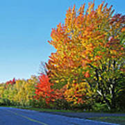 Whitefish Bay Scenic Byway Art Print
