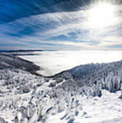 Whitefish Inversion Art Print
