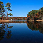 Whites Pond Art Print