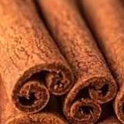 Whole Cinnamon Sticks  Art Print