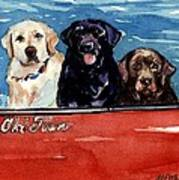Whole Crew Art Print by Molly Poole